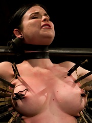 Curvy broad suffers for orgasms then strung up by hair suspension.